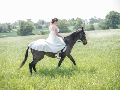 Emily & Steve – Horse Shoot